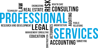 Professional Services wordmap